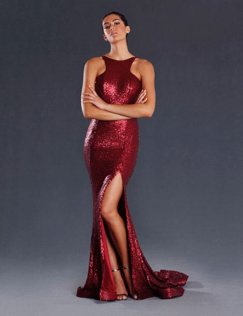 JX008-Wine Ball Gown